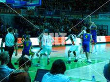 basket-002-d
