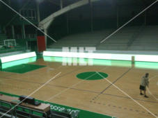 basket-005-d